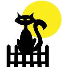 raamsticker Kat bij volle maan