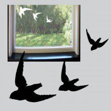Raamstickers Vogelvlucht vb2