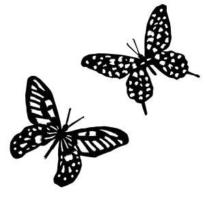 Raamstickers 2 vlinders