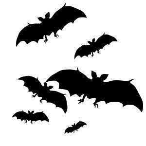 Raamstickers Vleermuizen