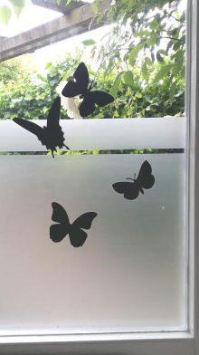 Raamfolie Ets in combi met vlindertjes