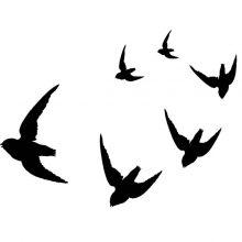 Raamstickers Vogelvlucht (ermanent)