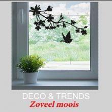 Trends & Deco