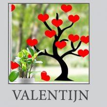 Raamsticker Valentijn